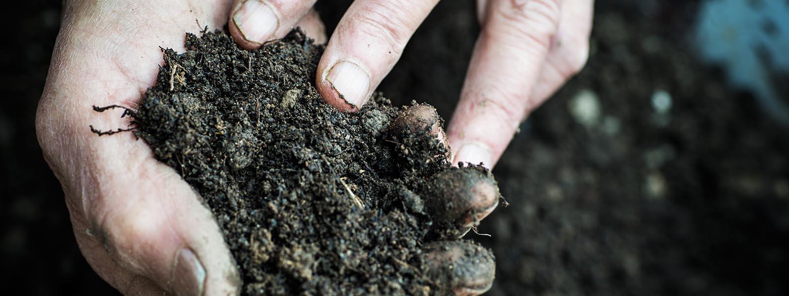 Mains d'agriculteur dans la terre