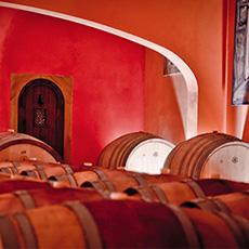 Cave du Moulin de Lène, domaine viticole Frayssinet à Magalas